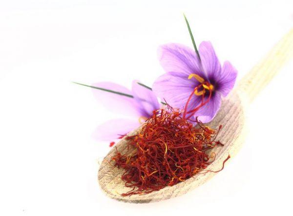 زعفران سرگل